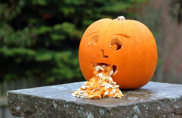 "A pumpkin depicting vomiting. It is carved to show a human face. The pumpkin seeds are spewing out of the ""mouth""."